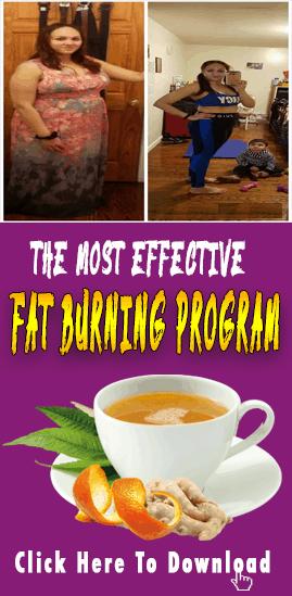 download flat belly fix plan
